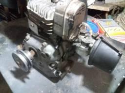 Motor 4 Tempos do Mini Bugy Fapinha e Moenda de Cana Estacionario Aceito Cartão