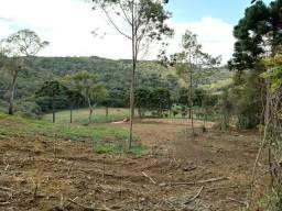 Chácara campo magro/a. Tamandaré