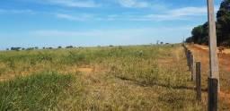 Fazenda no mato grosso para lavoura e pecuria