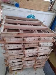 Título do anúncio: Produtos para apicultura WhatsApp 99686.6015