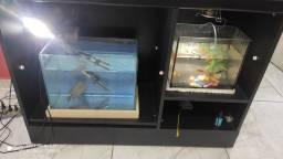 <br>Vendo 3 lindos aquarios : um lindo aquário com 1.00x50, 2 aquarios menores.