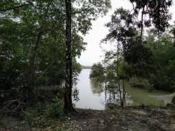 118 hectares região de Marapanim Curuça area de preservção 300 mil reais zap (91)988697836