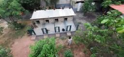 Hotel e creche canina com 700 metros quadrados transporte gratuito