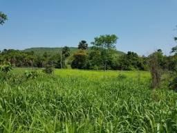 130 há (27 alq) Ótima fazendinha para projetos alimentícios perto da Capital