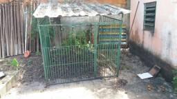 Gaiola pra criar galinhas