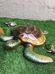 Tartarugas decoração