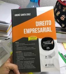 Sinopse NOVA 2020 Empresarial André Santa Cruz