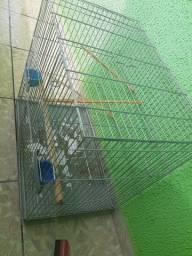 Vendo Viveiro/Gaiola para pássaros e espaço para caixa de ninho