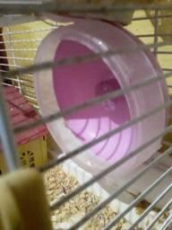 Brinquedo de Hamster