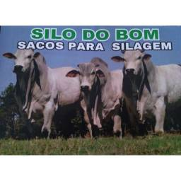 Saco de Silagem - Branco C/100 und.