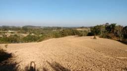 Terreno Industrial em Campina das Pedras/Araúcaria com 32.550m²