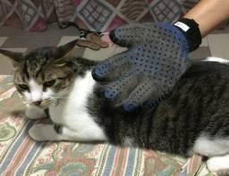 Luva Escova Nano Magnética Tira Pelos Dos Pets Cães e Gatos Removedor De Pelos
