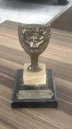 Troféu julles Rimet 1960