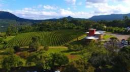 Surpreenda-se com esta vinícola, na Serra Gaúcha