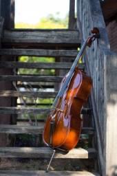 Violoncelo   Cello harmonizado por Luthier