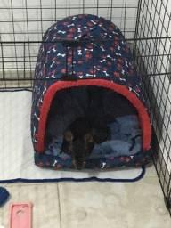 Título do anúncio: Vendo cama para cães ou gatos