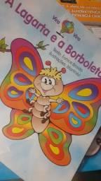 Livro a lagarta e a borboleta
