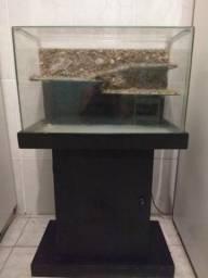 Aquário (terrario) 60 litros ( 60x40x29)