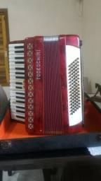 Gaita/acordeon Todeschini 80 baixos