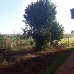 Chacara de 15 hectares
