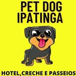 Hotelzinho para Pets