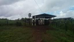 13,5 hectares e mais uma casa de alvenaria com 2/4 na vila proximo a castanhal por 80 MIL