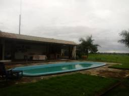 Fazenda no Acará 995 hectares