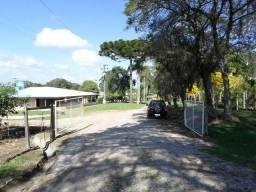 Ref. 735 - Fazenda de 60 Alqueires, 40 alqueires de planta, 15 alqueires de pasto