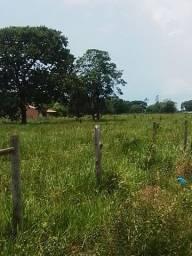 Chacara na Gameleira.Campo Grande MS