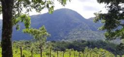 Totalmente facilitado terrenos Serra de Guaramiranga sem juros linda vista