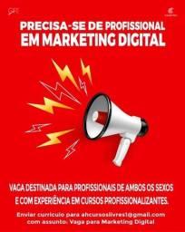 Vaga para profissional em Marketing Digital