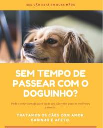Passeador de cães - dogwalker