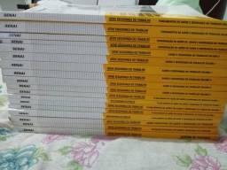 Séries de livros(técnico de segurança do trabalho)