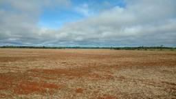 Fazenda 1790 Ha - Nova Canaa - MT -  Soja - Lavour