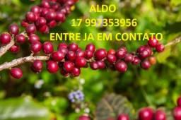 Adubo Liquido - NPK 20-05-20 e outras formulações