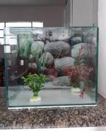 Vende-se aquário 14L + filtro com bomba + 2 plantas decorativas