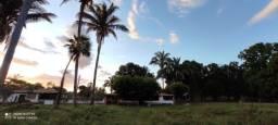 Vende-se Fazenda 130 hectares