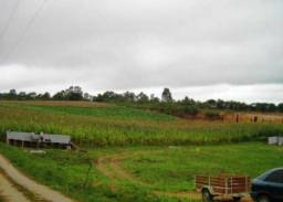 Terreno comercial com 3.841,24 m², Colonia Zacarias só R$450 mil