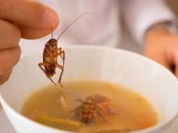Dedetização contra insetos. Atendo toda Anápolis