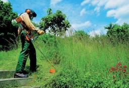Serviços de roçada, poda e jardinagem
