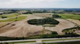 35 hectares - Somente Venda