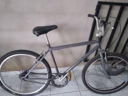 Bicicleta luzimangues