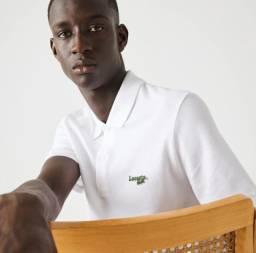Título do anúncio: Polo masculina Branca Lacoste