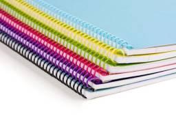 Livros de inglês para educação Infantil.(Lote 10 unidades)
