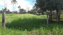Colônia no KM 64 da estrada de Sena no ramal do copaiba