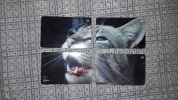 Cartão Telefônico (Gato)