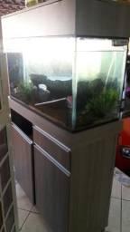 Vendo aquário montado