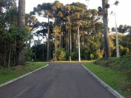 Terreno em Condomínio - Prox. parque barigui - Curitiba - Parcelas a partir de 6.617,28