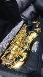 Saxofone Alto Accord Deluxe usado