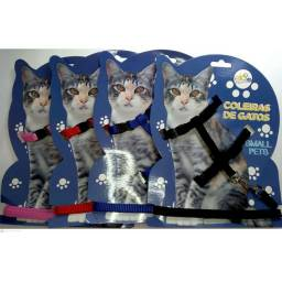 Coleira para Gatos!!